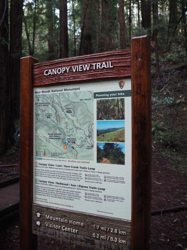 Muir Woods kansallispuisto